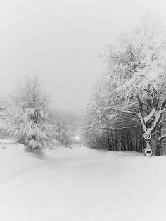 Domandarsi perche' quando cade la tristezza in fondo al cuore, come la neve non fa'rumore. (Emozioni,Lucio Battisti) Foto di Katyb