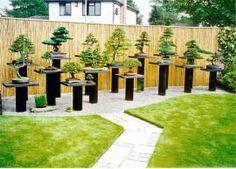 Stunning Bonsai Garden Ideas Best For Outdoor Decor 26