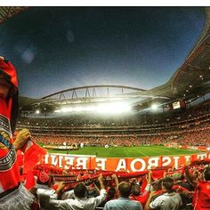 INTERVALO!  SL Benfica 1-0 Dinamo de Kiev  #SejaOndeFor #UCL