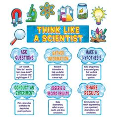 1000 images about science first grade on pinterest first grade science first grade and science. Black Bedroom Furniture Sets. Home Design Ideas