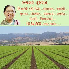 Agriculture... Kalpsar Gujarat