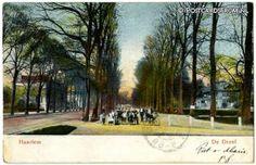 Haarlem, De Dreef