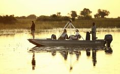Enjoy Luxury African Safari Lodges in the Okavango Delta, a game reserve in Botswana - home to the world's best wildlife safaris and safari vacations Okavango Delta, Wildlife Safari, Game Reserve, African Safari, Tent Camping, Lodges, Boat, Vacation, World