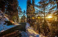The winter sun, Nathia gali
