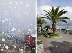 Palm-Express: Eine Fahrt vom Winter in den Sommer