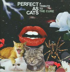 Perfect as Cats: A Tribute to the Cure - Various Artists | Songs, Reviews, Credits, Awards | AllMusic