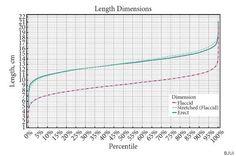 ¿Cuánto mide un pene normal? Un nuevo estudio da datos más precisos