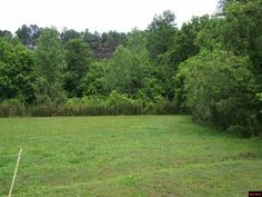 Level White River tract with 257' Level White River tract with 257' of river frontage in nice area on paved road. With clearing the river and bluff view will be amazing. The land is close to several Lake Norfork and North Fork boat Launches in Norfork AR