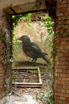roa_street_art_bird.jpg 512×768 pixels