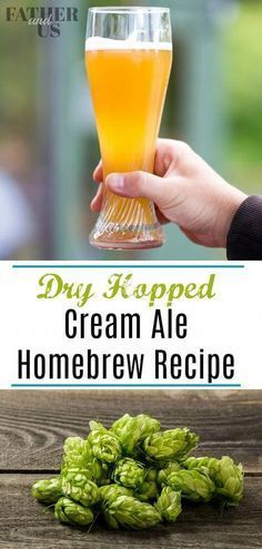 Dry Hopping Cream Ale! Dog Beer Recipe, Brewing Recipes, Homebrew Recipes, Beer Recipes, Recipe Fr, Ale Recipe, Homemade Beer, Ale Beer, Root Beer