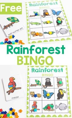 This free printable Rainforest BINGO game for preschool and kindergarten is a fun activity. It is perfect for learning about rainforest animals with small groups. Try this fun rainforest animal bingo with your kids today! Rainforest Preschool, Rainforest Crafts, Preschool Jungle, Jungle Crafts, Rainforest Theme, Rainforest Classroom, Rainforest Animals For Kids, Jungle Art, Free Preschool
