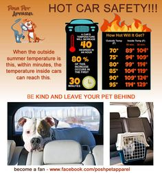 Hot Car Safety