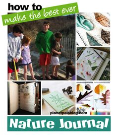 Nature Journals can be a great learning experience all year long - Learn how to make one! Science Activities For Kids, Outdoor Activities, Blooming Trees, Wild Weather, Pre School, Summer School, Nature Journal, Nature Study, Patterns In Nature