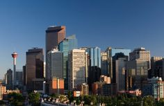 Investors hoping that dropping oil prices would give them a foothold in the Calgary housing market might not see the drop in prices they had hoped for.