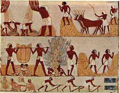 La-vie-en-Egypte-ancienne-Papyrus-égyptien, la moisson, le labour, la médecine égyptienne, la navigation sur le Nil.
