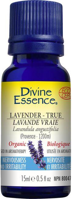 La Lavande Vraie est cultivée en Provence, et pousse à une certaine altitude. Son appellation est contrôlée. La Lavande est sans aucun doute l'un des fleurons de l'aromathérapie aujourd'hui. En plus d'un parfum agréable, elle fournit une huile essentielle dont l'efficacité et la forte tolérance sont largement reconnues. L'huile essentielle de Lavande Vraie est utilisée en aromathérapie pour ses propriétés relaxantes (sédative, calmante, nervine), afin de soulager la nervosité…