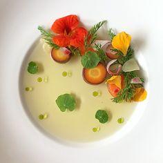 Carrot & Ginger Tea, Radish, Nasturtium, Celery Oil - #myfood #fromscratch #soup