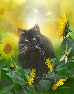 Such a sweet kitty And dragonfly, too Enjoying sunshine and sunflowers On a warm afternoon.  This painting of a black cat sitting in a garden of bright blooming sunflowers, with a colorful dragonfly, is from the Dogs & Cats Collection of art by Carol Cavalaris.