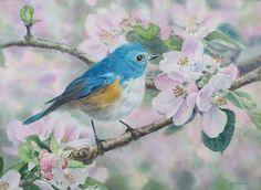 Kuo Hsin-i -The Watercolour Log: Watercolour Paintings (6)