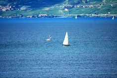 Avec cette période de canicule les plans d'eau azurs que sont la mer ou les lacs sont appréciés. Pour ce lundi symbole de reprise pour beaucoup laissons notre humeur voguer au fil de l'eau. Voguer sur un lac Azur Voguer sur un lac Azur Bleu Avec ce dernier...