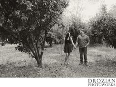 Rustic outdoor plum tree Engagement Photography