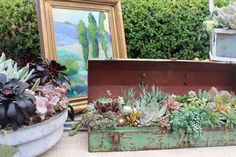 Nature inspired art work by alongside arrangements by Succulent Style Seaside Home Decor, Newport Beach, Nature Inspired, Local Artists, Great Places, Art Work, Succulents, Artisan, Create