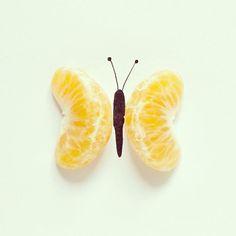 Mandafly