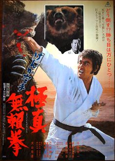 Karate Bear Fighter poster