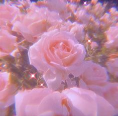 Pink Tumblr Aesthetic, Baby Pink Aesthetic, Iphone Wallpaper Tumblr Aesthetic, Aesthetic Pastel Wallpaper, Aesthetic Wallpapers, Whats Wallpaper, Pink Wallpaper Iphone, Iphone Background Wallpaper, Retro Wallpaper