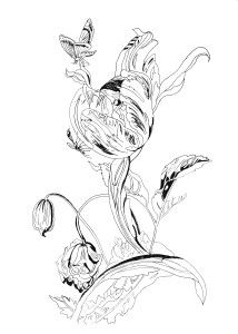 Pippa Rossi Lost Garden Adult Coloring Book Flower By On DeviantArt