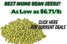 Gotta love sprouting mung bean seeds! Bean Seeds, Mung Bean, Flower Seeds, Beans, Organic, Vegetables, Food, Essen, Vegetable Recipes
