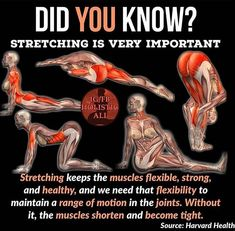 Stretching for the health of it