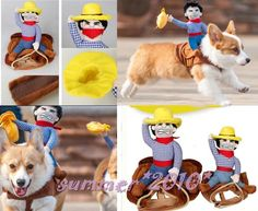 Cowboy Dog Riders Costume Pet Clothes Harness Dress Up Halloween with Bull Hat in Pet Supplies, Dog Supplies, Clothing & Shoes | eBay