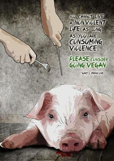 """You cannot live a nonviolent life as long as you are consuming violence. Please consider going vegan."" - Gary L. Francione"