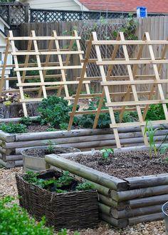 5 Tips to Start Your Vegetable Garden 5