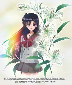 TOEI Animation Naoko Takeuchi