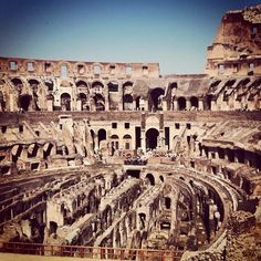 """""""Lions and tigers and gladiators oh my!"""" #rome #travel"""