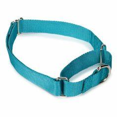 Amazon.com : Guardian Gear Nylon Martingale Dog Collar, 10-16-Inch, Bluebird : Pet Choke Collars : Pet Supplies