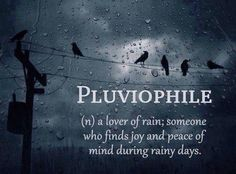 Pluviophile - a lover of rain; someone who finds joy & peace of mind during rainy days. Beautiful Words, Beautiful Day, Beautiful Definitions, Beautiful Things, Inspiring Things, Amazing Things, I Love Rain, Love Rain Quotes, Finding Joy