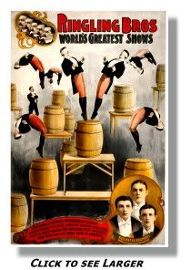 """A fabulous collection of vintage circus posters from """"the greatest show on earth"""". Featuring many circus performers from elephants to clowns and acrobats. Old Circus, Circus Show, Circus Art, Night Circus, Circus Theme, Circus Train, Circus Birthday, Birthday Parties, Ringling Brothers Circus"""