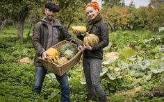 The couple revolutionising pumpkins: Marcus and Serena Henderson.