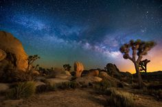 Joshua Tree National Park at night, with the Milky Way above. Canon 1Dx, Nikon 14-24mm lens, f 2.8,20 sec,14 mm, ISO 6400.