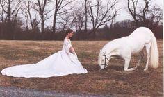 the white horse again!