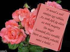 Dalai Lama, Grief, Place Cards, Barbie, Place Card Holders, Flowers, Attila, Barbie Dolls