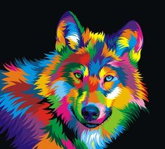 Wolf Canvas Art by Bob Weer Colorful Animal Paintings, Colorful Animals, Cross Paintings, Your Paintings, Wolf Canvas, Desenho Tattoo, 5d Diamond Painting, Arte Pop, Art Mural