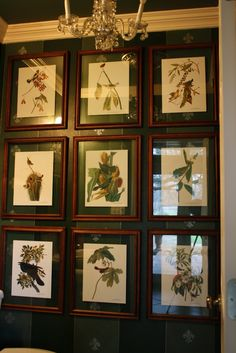 Making a statement in a small room. Ready made frames from Hobby Lobby were hung making a grid from floor to ceiling. Backing was replaced with another sheet of glass. Prints are floating between the two sheets of glass, showing off the stenciled wall.