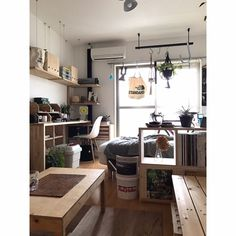 seiyanさんの、賃貸,一人暮らし,DIY,無印良品,観葉植物,賃貸DIY,Overview,のお部屋写真