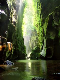 Claustral Canyon, Australia. We'll go to Australia one day in our future. We'll have to go for a week or two.
