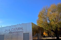 Exposición de Fotografía Artística: Arte, cultura y naturaleza en Pedrajas