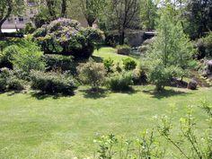 Il parco termale delle Terme di Stigliano. #nature #flower #green #land